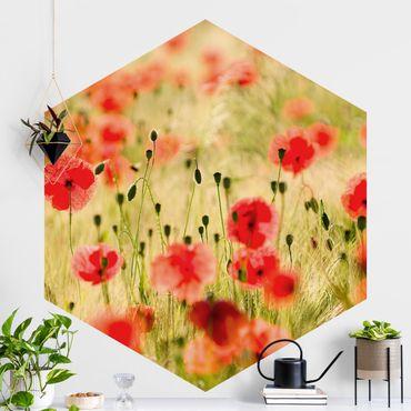 Hexagon Mustertapete selbstklebend - Summer Poppies