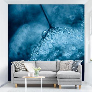 Fototapete - Blaue Pusteblume im Regen