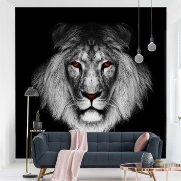 Fototapete Dark Lion II