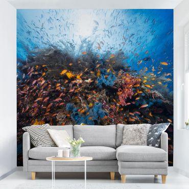 Fototapete Lagune mit Fischen