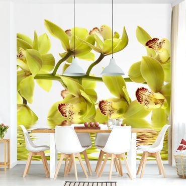 Fototapete Splendid Orchid Waters