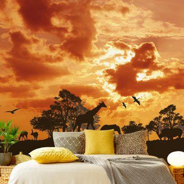 Fototapete Tanzania Sunset