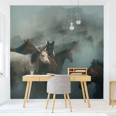 Fototapete - Wilde Pferde