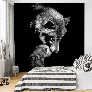 Fototapete - Wolf vor Schwarz
