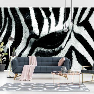 Fototapete Zebra Crossing