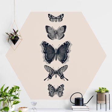 Hexagon Mustertapete selbstklebend - Tusche Schmetterlinge auf Beige