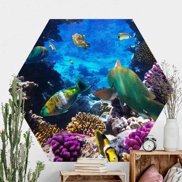 Hexagon Mustertapete selbstklebend - Underwater Dreams