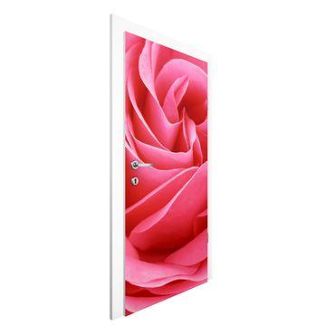 Türtapete - Lustful Pink Rose