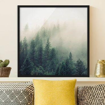 Bild mit Rahmen - Wald im Nebel Erwachen - Quadrat