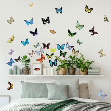 Wandtattoo Schmetterling No.51 Schmetterlinge Set2