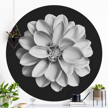 Runde Tapete selbstklebend - Zarte Dahlie in Schwarz-Weiß