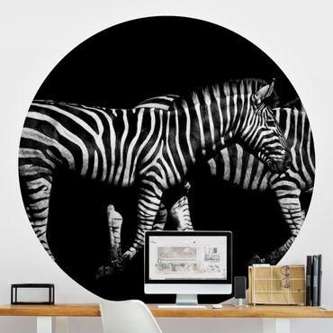 Runde Tapete selbstklebend - Zebra vor Schwarz