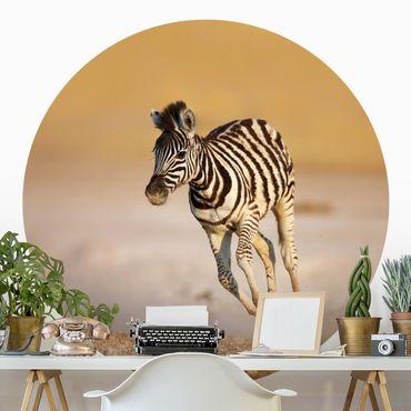Runde Tapete selbstklebend - Zebrafohlen