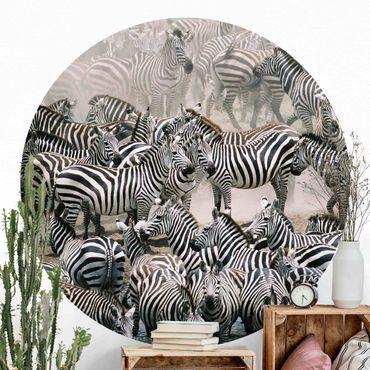 Runde Tapete selbstklebend - Zebraherde