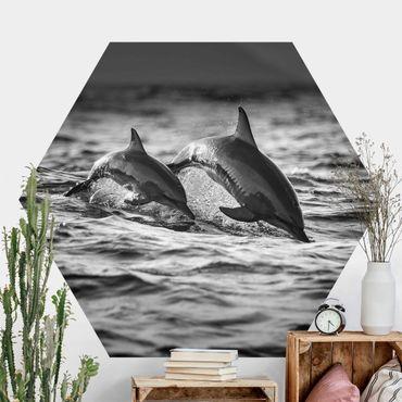 Hexagon Mustertapete selbstklebend - Zwei springende Delfine