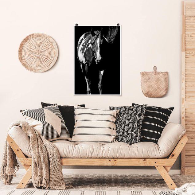 Poster - Pferd vor Schwarz - Hochformat 3:2