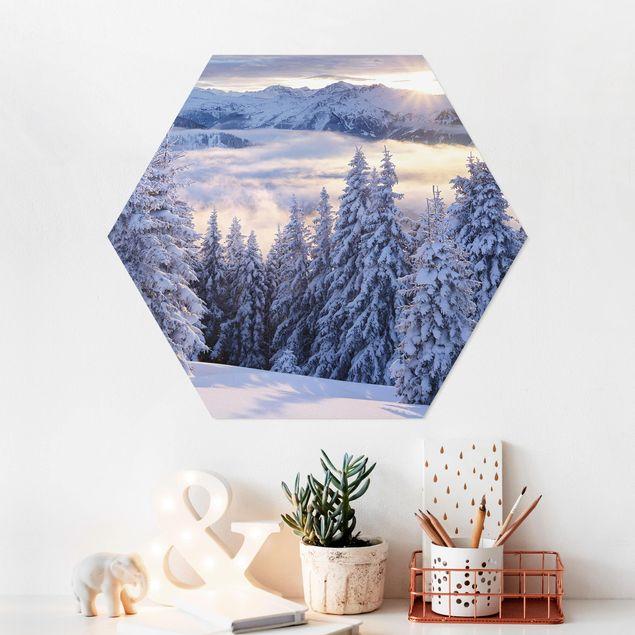 Hexagon Bild Forex - Blick in die Hohen Tauern vom Kreuzkogel Österreich