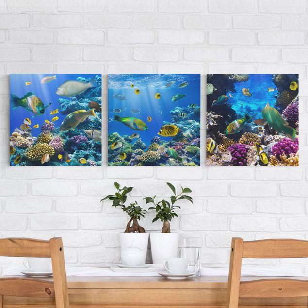 Leinwandbild 3-teilig - Underwater Trio - Quadrate 1:1