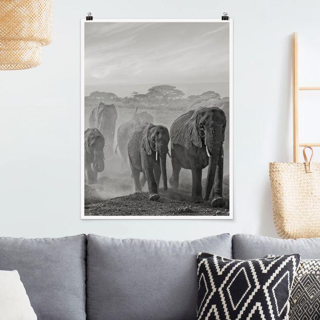 Poster - Elefantenherde - Hochformat 3:4