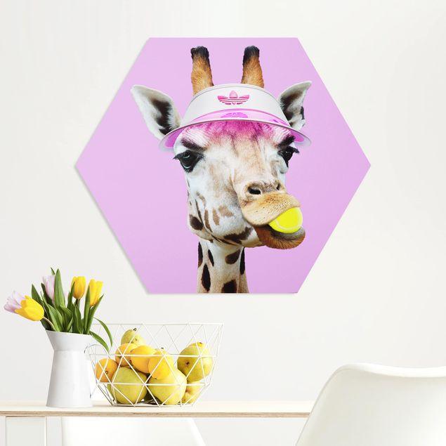 Hexagon Bild Forex - Jonas Loose - Giraffe beim Tennis