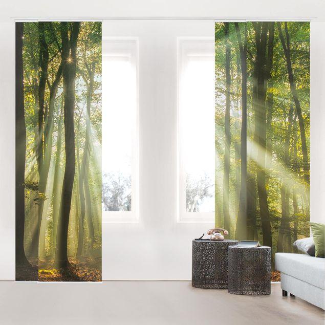Schiebegardinen Set - Sonnentag im Wald - Flächenvorhänge