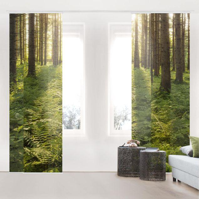 Schiebegardinen Set - Sonnenstrahlen in grünem Wald - Flächenvorhänge