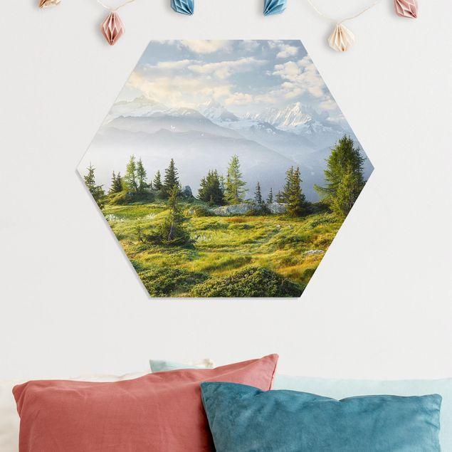 Hexagon Bild Forex - Émosson Wallis Schweiz