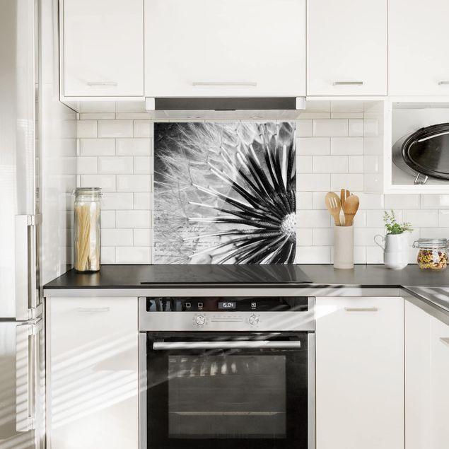 Glas Spritzschutz - Pusteblume Schwarz & Weiß - Quadrat - 1:1