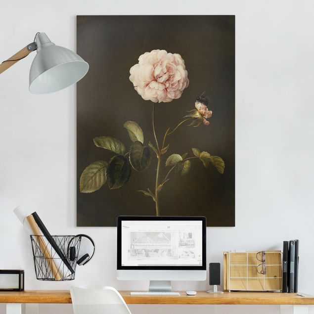 Leinwandbild - Barbara Regina Dietzsch - Essig-Rose mit Hummel - Hochformat 4:3