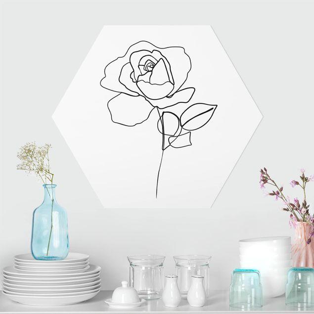 Hexagon Bild Forex - Line Art Rose Schwarz Weiß