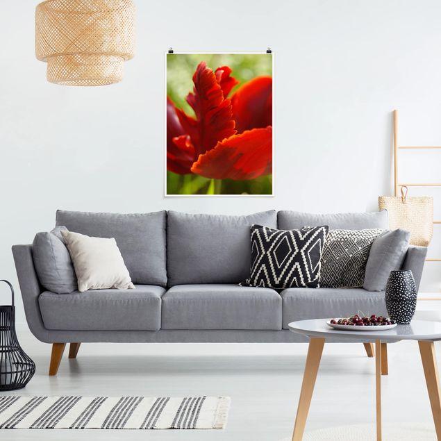 Poster - Red Tulip - Hochformat 3:4