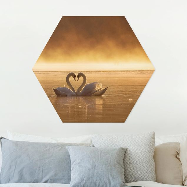 Hexagon Bild Forex - Lovers
