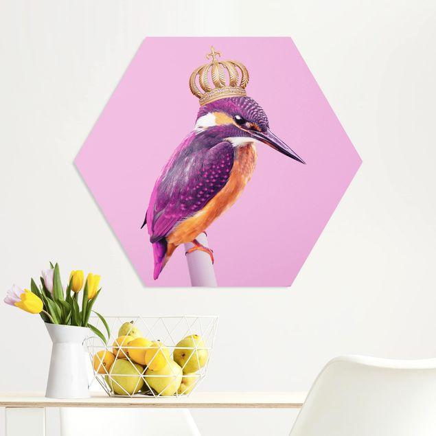 Hexagon Bild Forex - Jonas Loose - Rosa Eisvogel mit Krone