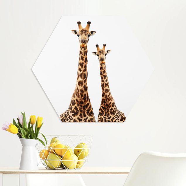 Hexagon Bild Forex - Portait Zweier Giraffen