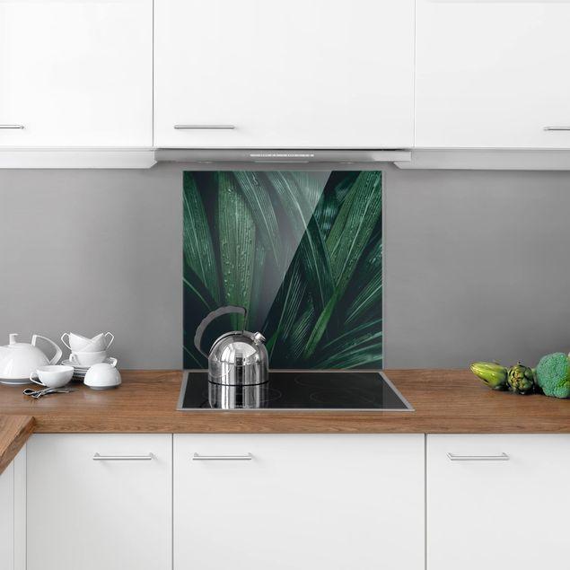 Glas Spritzschutz - Grüne Palmenblätter - Quadrat - 1:1