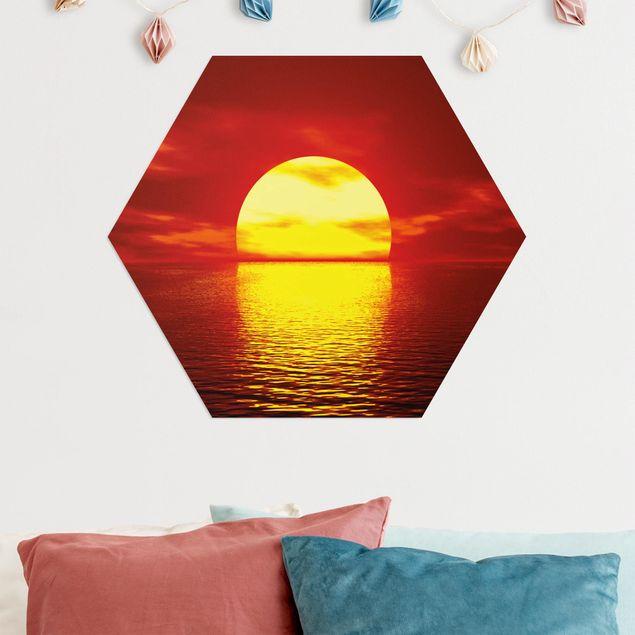 Hexagon Bild Alu-Dibond - Fantastic Sunset