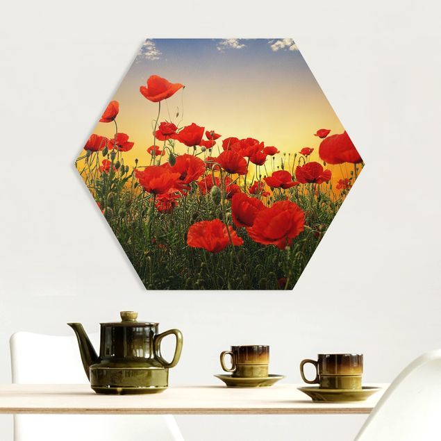 Hexagon Bild Forex - Mohnblumenfeld im Sonnenuntergang