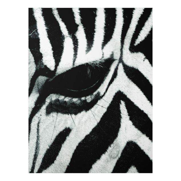 Alu-Dibond Bild - Zebra Crossing No.2