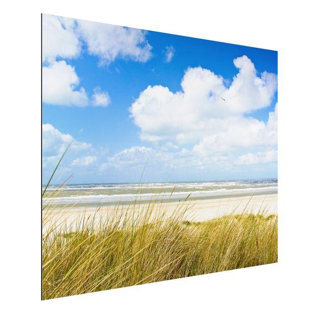 Alu-Dibond Bild - An der Nordseeküste Panorama