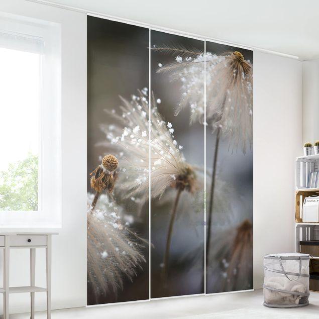 Schiebegardinen Set - Pusteblumen mit Schneeflocken - Flächenvorhang