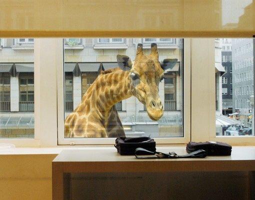 Fensterfolie - Fenstersticker No.21 Neugierige Giraffe - Fensterbilder