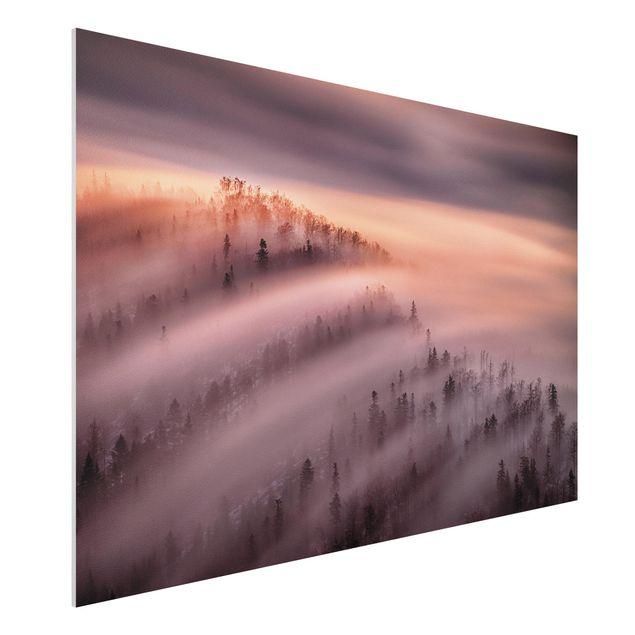 Forex Fine Art Print - Nebelflut - Querformat 2:3
