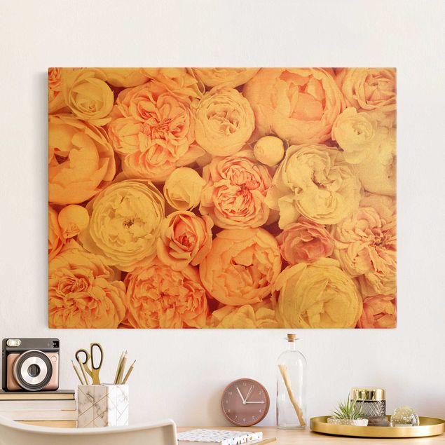 Leinwandbild Gold - Rosen Rosé Koralle Shabby - Querformat 4:3