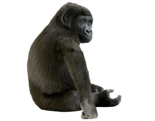Wandtattoo Affe No.162 Kleiner Gorilla