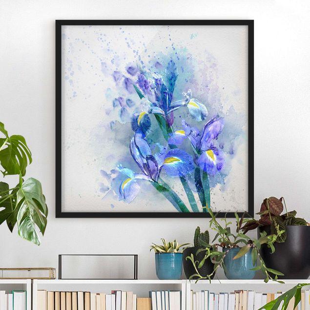 Bild mit Rahmen - Aquarell Blumen Iris - Quadrat 1:1