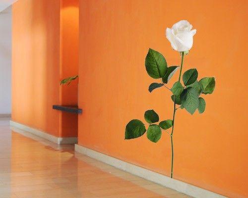 Wandtattoo Rose No.SB54 Weiße Rose