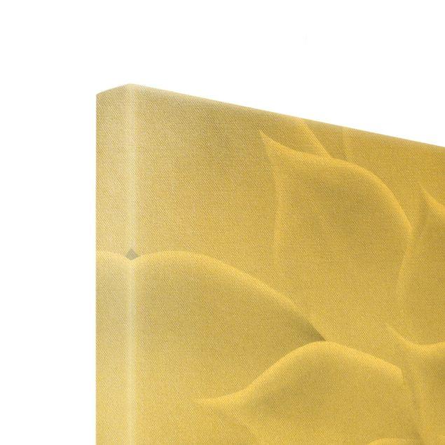 Leinwandbild Gold - Kaktus Sukkulente - Querformat 4:3