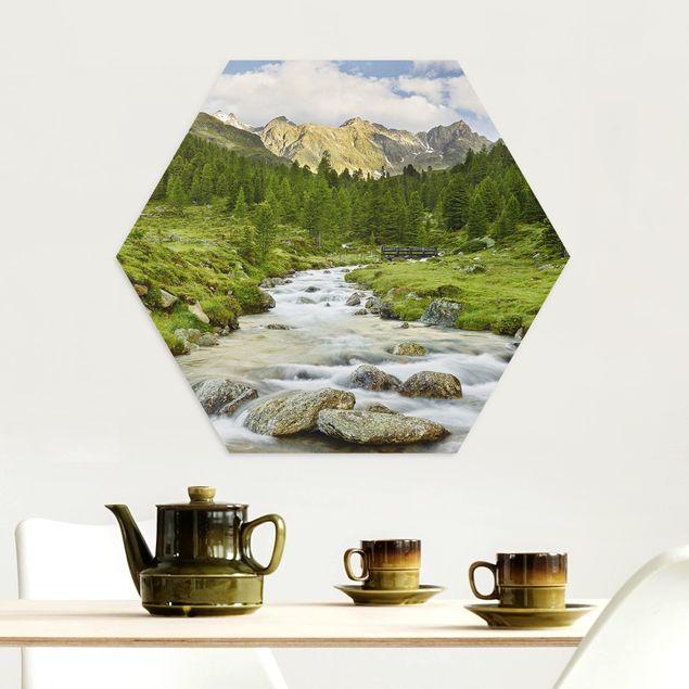 Hexagon Bild Alu-Dibond - Debanttal Nationalpark Hohe Tauern