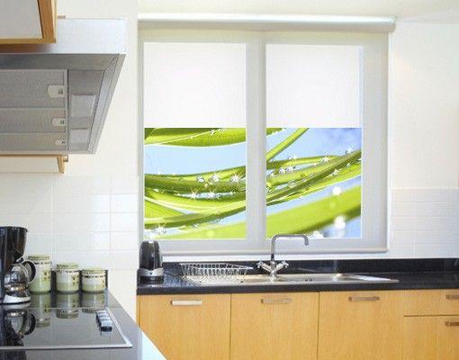 Fensterfolie - Sichtschutz Fenster Fresh Green - Fensterbilder