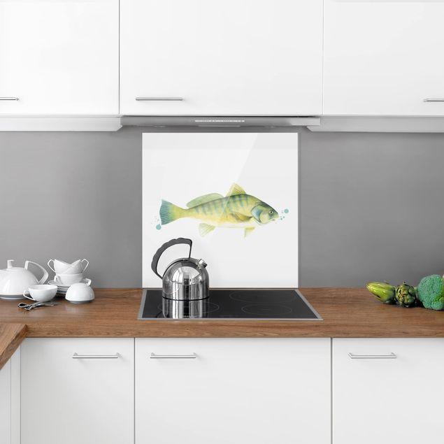 Glas Spritzschutz - Farbfang - Flussbarsch - Quadrat - 1:1